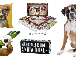 20 Items That All Boxer Lovers Need To Have