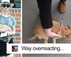 Paparazzo Touches Jennifer Lawrence's Dog, And Her Rude Reaction Sparks Heated Discussion