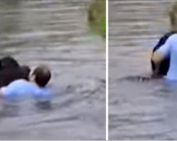 Zoo Staff Refuse To Save Drowning Chimp, Suddenly Man Jumps Into Enclosure
