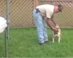 I Thought This Guy Was Being Mean To His Dog. Then… OMG! I Couldn't Stop Laughing.