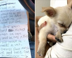 Woman Finds Puppy Abandoned In Airport Bathroom, Then Reads Owner's Note About Boyfriend's Abuse