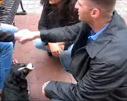 Wife Surprises Soldier Husband With The Homecoming Puppy Of His Dreams