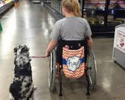 Teen with epilepsy warns of serious consequences when strangers pet service dogs without permission