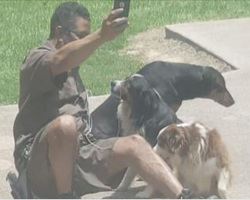 Woman Caught UPS Drivers Abnormal Behavior With Her Dogs, Exploits His Act For World To See