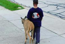 10-year-old boy walks blind deer across the street to find food everyday before school