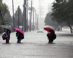 Here Are 9 Ways You Can Help The Victims Of Hurricane Harvey