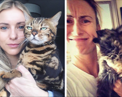 10+ Times Cats Didn't Want To Be In Your Stupid Selfies And The Result Was Hilarious