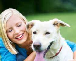 All About Lifetime Pet Insurance