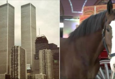 Budweiser Clydesdales Trained For 45 Days To Perfect Emotional Bow In Post-9/11 Commercial