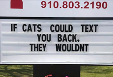 10+ Genius Vet Signs That Will Make You Laugh