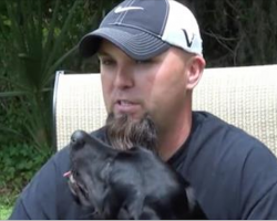During An Interview, This Veteran Has A Panic Attack. Now Watch The Dog…