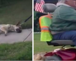 Monster drags dog behind his scooter, has no idea that he's on camera and will pay the price