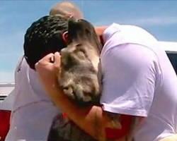 Soldier is forced to leave street dog he rescued in Iraq. 1 mth later, they reunite on the other side of Earth