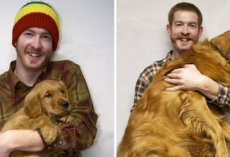 20+ Heartwarming Then & Now Photos Of Pets And Their Owners