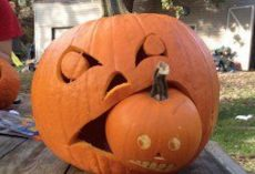 21 Awesome Jack-O'-Lantern Ideas You Will Want To Steal For Halloween