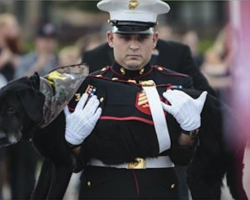 Community Comes Together To Bid Farewell To Dying Canine Marine