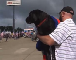 He was about to put down his senior war dog, then a group of biker showed up