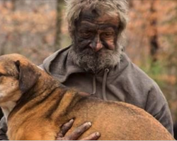 Homeless man says goodbye to the 31 stray dogs he's been caring for in the woods