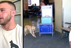Nervous Soldier Waits To Reunite With Military Dog, Then Turns Around To Find Her Running To Him