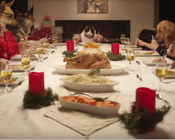 Pets Gather Around The Table To Celebrate Christmas With A Holiday Feast. This is Priceless!