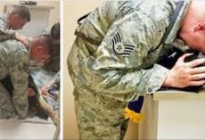 Airman Holds Dying Military Dog, Then Boss Orders Staff To Get American Flag Quickly