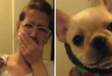 Woman Tells Pup That She Loves Her, But The Dogs Response Brings Her To Tears.