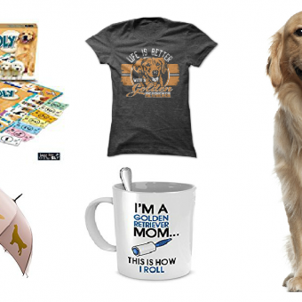 20 Items That All Golden Retriever Lovers Need To Have