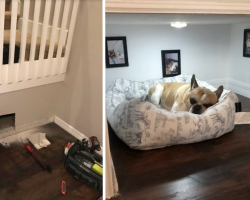Dad Builds Dog His Very Own Room Under The Stairs, And It's Perfect