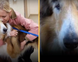 Jake Gave 16 Loyal Years To Family That Left Him But Then It All Turned Around
