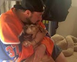 Kevin Smith Shares Moving Tribute To His Dying, 17-Year-Old Dog