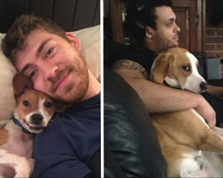 10+ Pets Who Stole Owner's Partner And Didn't Think Twice