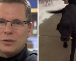 Cop Follows Panicked Dog, Realizes Something Is Terribly Wrong — Now, They're Both Heroes