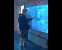 Man Touches Glass At Aquarium Display. Seconds Later, Gets Knocked To His Feet In Sheer Fright