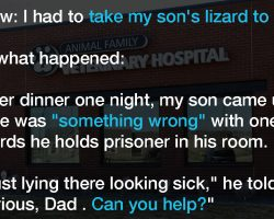 Parents think son's pet lizard is pregnant, have hysterical experience at the vet's office
