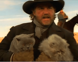 Cowboys Herding Cats May Just Be The Funniest Commercial You've Never Seen