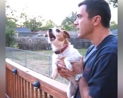 """Dog Starts Making The Creepiest Noises Whenever Dad Says The Word """"Squirrel"""""""