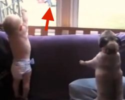 Mom Captures Priceless Moment Her Babies See Daddy Coming Home