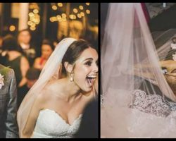 Stray Dog Crashes Wedding But It's The Couple's Reaction That Made Their Day Perfect