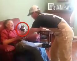 Dog Plays Possum Whenever This Man Picks Him Up And Everyone Dies Of Laughter