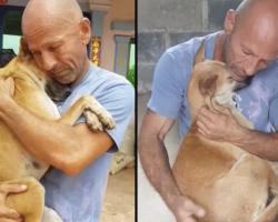 Man Rescues Dog From Slaughterhouse, And She Can't Stop Hugging Him