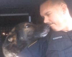 Officer Honors Beloved K-9 Partner With Final Radio Call After 8 Years Of Loyal Service