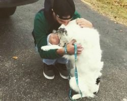 Border Collie Who Was Severely Neglected Leans In To Hug His New Dad