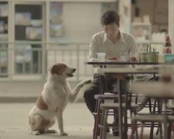 3-Minute Video That Will Make Your Life Richer… And Bring Tears To Your Eyes.