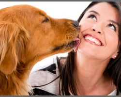 5 Ways To Tell That Your Dog Really Does Love You