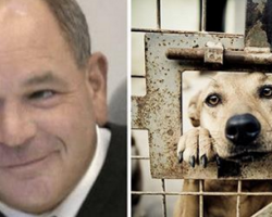 Ohio Judge Is Fed Up With Animal Abusers, Decides To Give Them A Taste Of Their Own Medicine