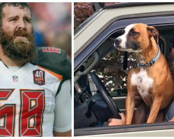 NFL Player Leaves Football Behind, Adopts Shelter Dog And Goes On Epic Road Trip