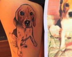 The 15 Coolest Beagle Tattoo Designs In The World