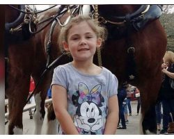 Dad Takes Photo Of Little Girl With Horse, Realizes He's Captured The Funniest Picture Ever
