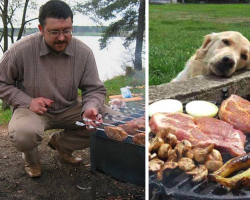 20 Dogs Who Take Begging To A Whole New Level