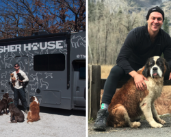 Hero Quits His Job To Travel The Country And Save All Of The Shelter Dogs